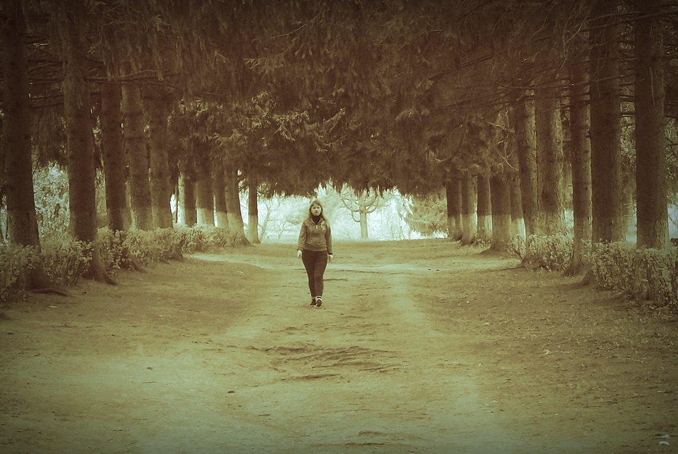 Путешествие во сне и наяву: день 7-й