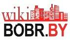 Открытая энциклопедия Бобруйска: первые шаги, первые статьи