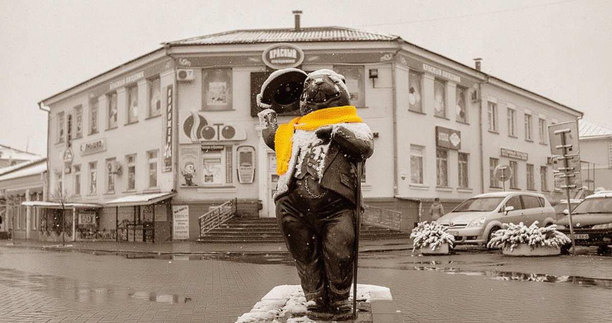 Velcom подключил к Wi-Fi бобра в центре Бобруйска