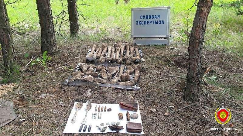 У деревни Бояры обнаружены останки погибших в войну солдат